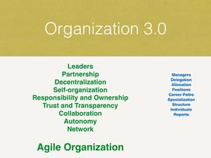 Agile organization 3.0
